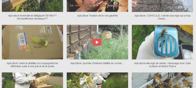 Mes vidéos sur le thème de l'apiculture