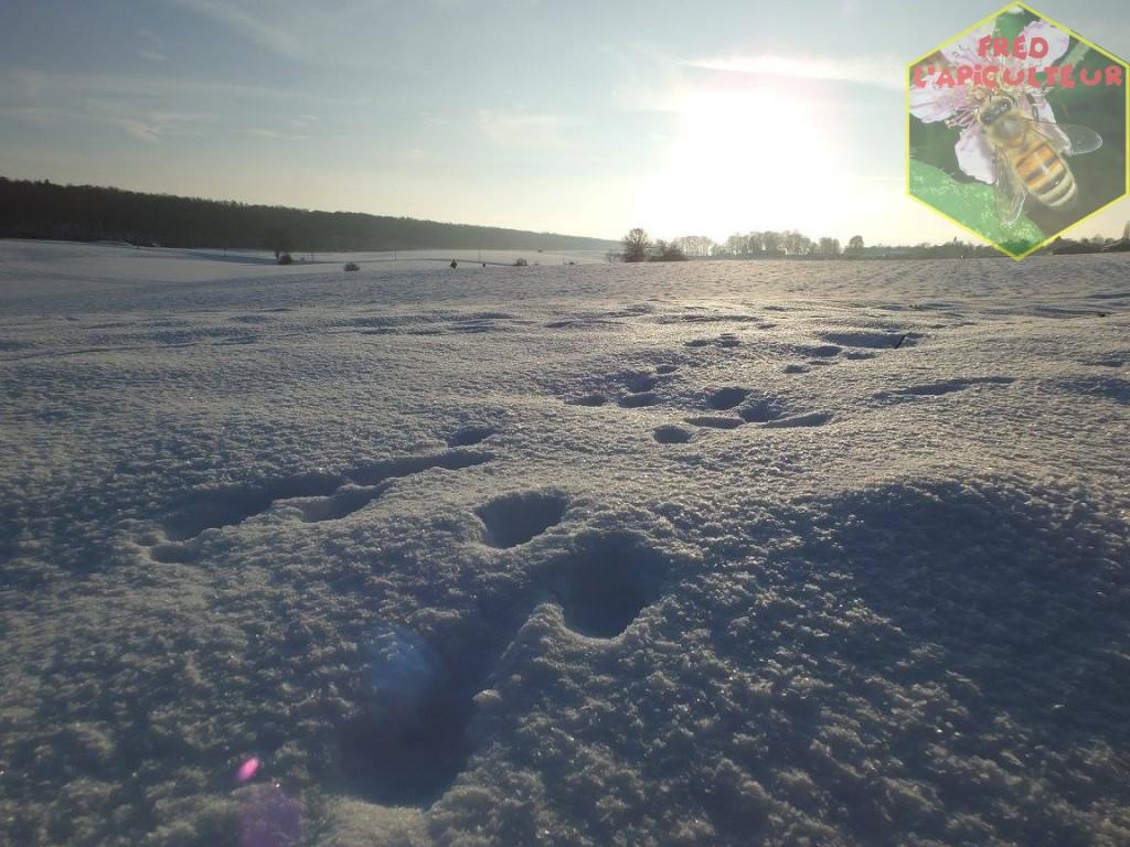 paysage neige Condroz