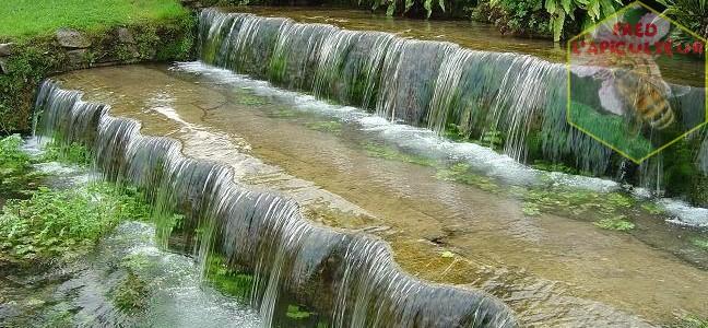 Les jardins d'Annevoie: cascades et fontaines en pagaille.