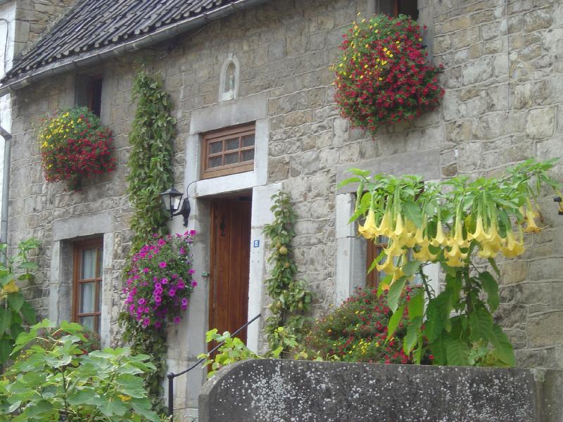 jolies jardini res et fa ade fleurie mode d 39 emploi fred. Black Bedroom Furniture Sets. Home Design Ideas