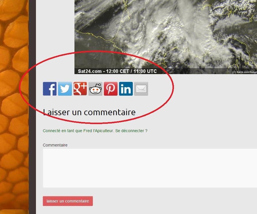 partage médias sociaux wordpress