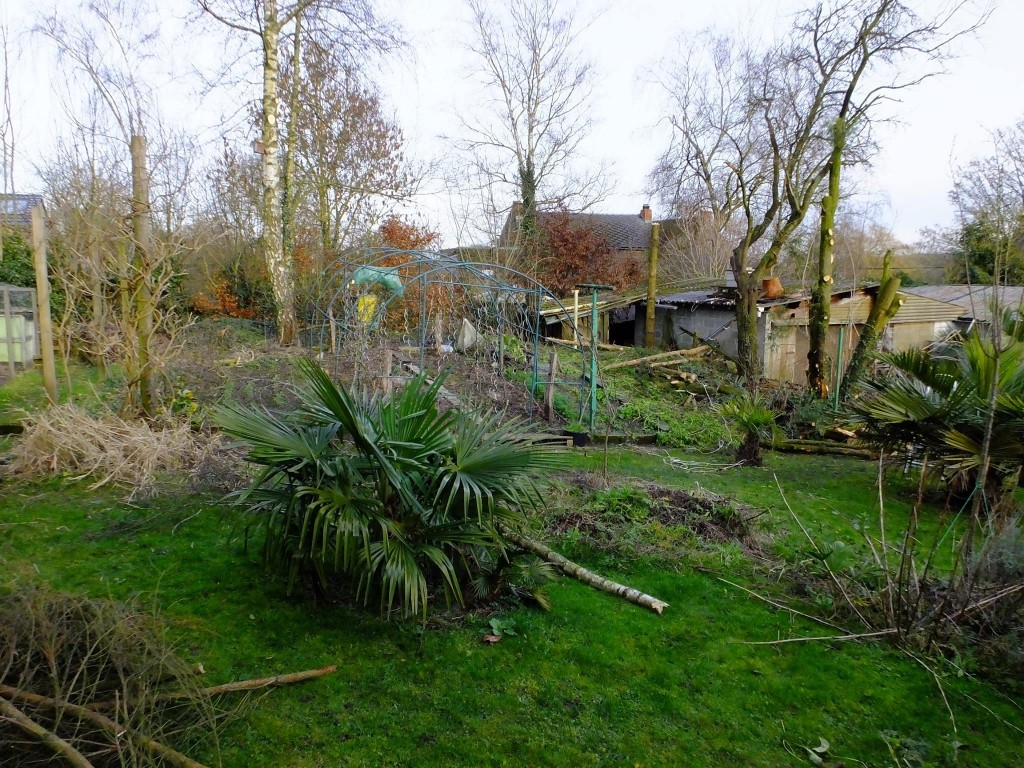 Achat de 2 pommiers de longue conservation fred l for Jardin 02