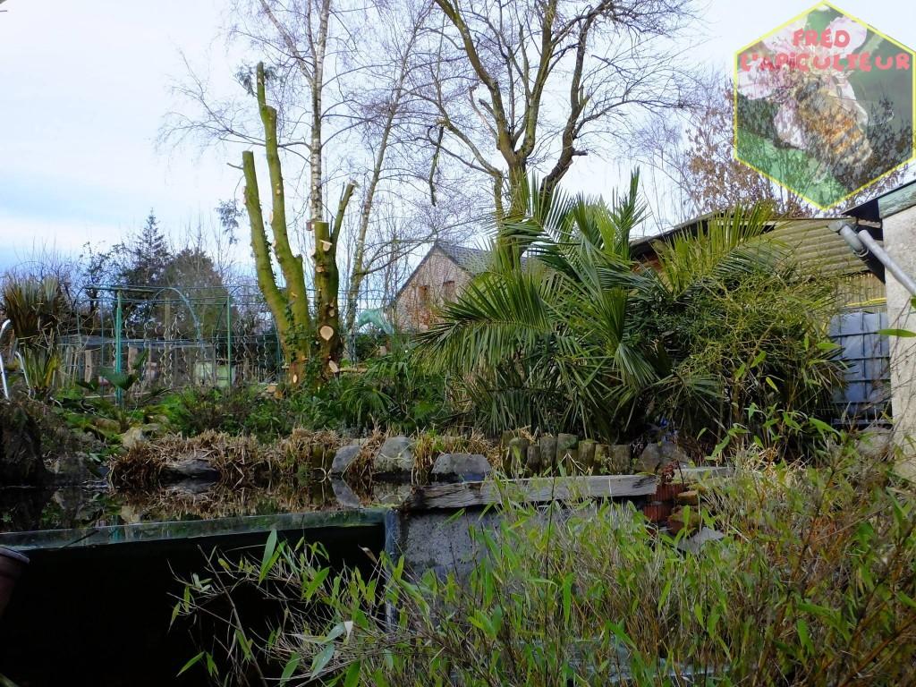 jardin-abattage1