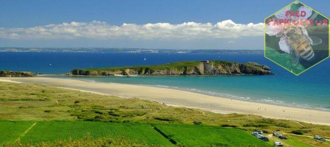 Vacances 2016: Camaret-Crozon (Bretagne-Finistère): 9ème partie, estuaire de l'Aber