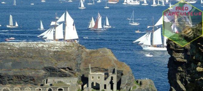 Vacances 2016: Camaret-Crozon (Bretagne-Finistère): 2ème partie, grande parade maritime