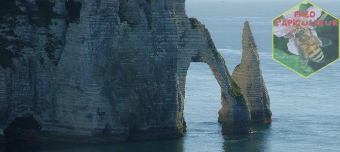 Vacances 2016: Camaret-Crozon (Bretagne-Finistère): 1ère partie, étape à Etretat