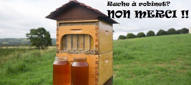 Ruche à robinet – Flow hive: une vraie fausse bonne idée…