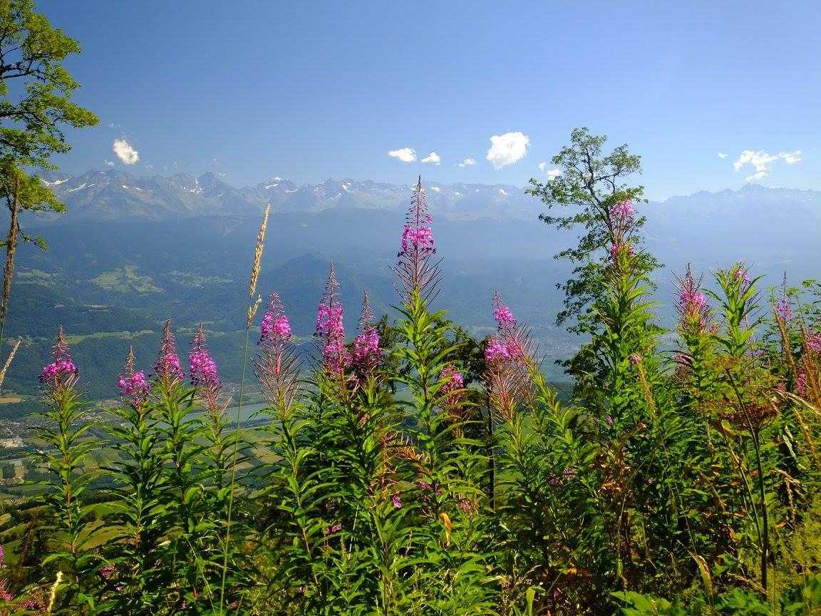 massif chartreuse croix alpe belledonne