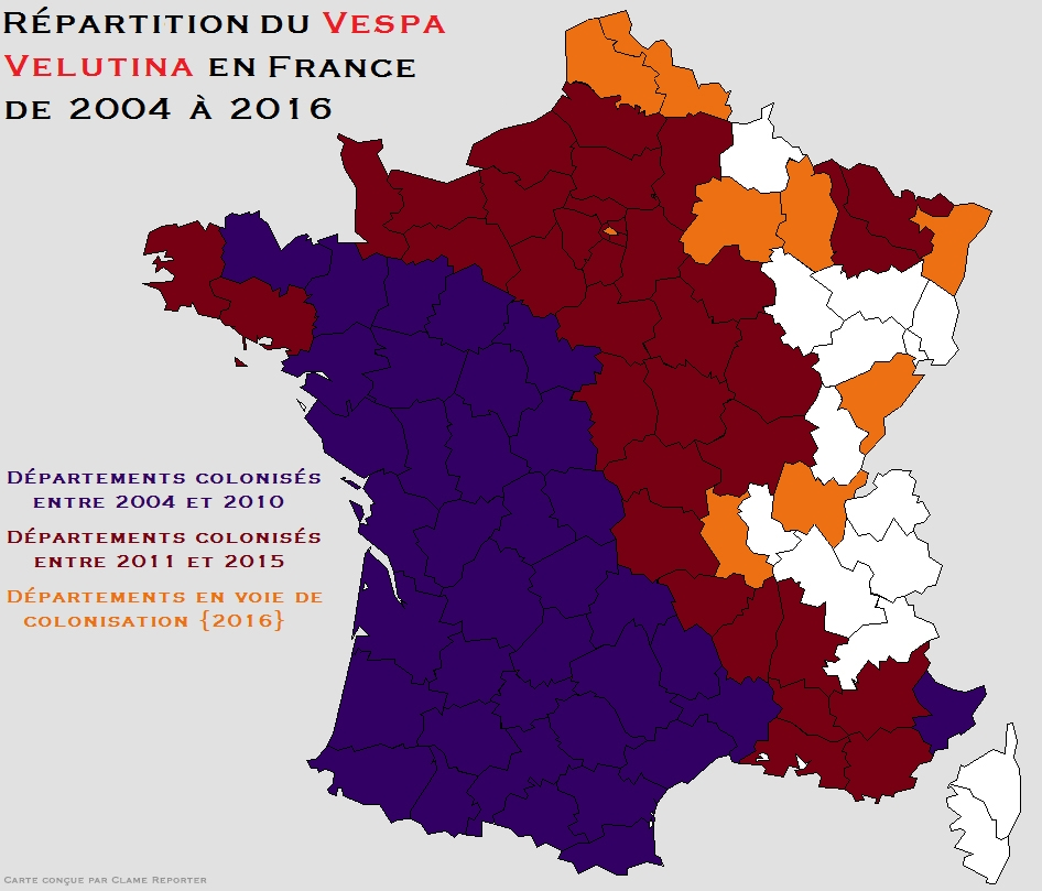 repartition_du_frelon_asiatique_en_france_de_2004_a_2016