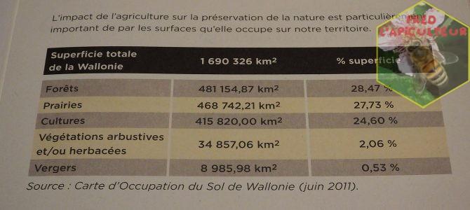 «La Wallonie, la médiocrité au quotidien…»