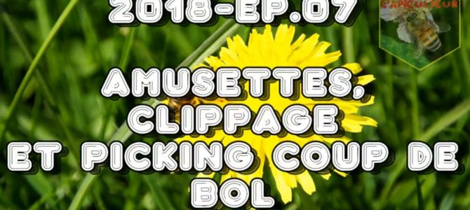 2018- Ep.07 Amusettes, clippage et picking coup de bol
