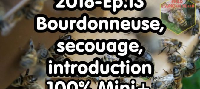 2018-Ep.13 – Bourdonneuse, secouage, introduction; 100% Mini+