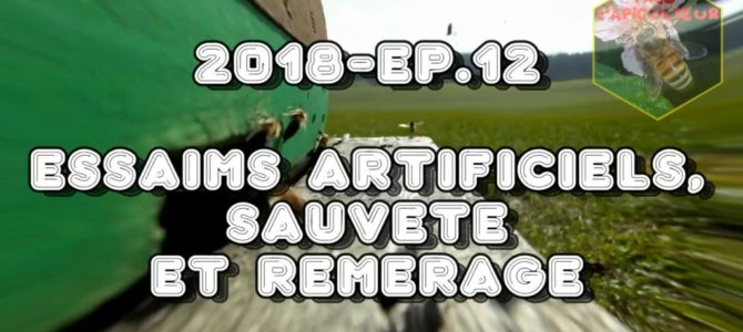 Fred l'Apiculteur – 2018-Ep.12 – Essaims artificiels, sauveté et remérage