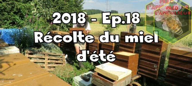 2018-Ep.18 – Récolte du miel d'été