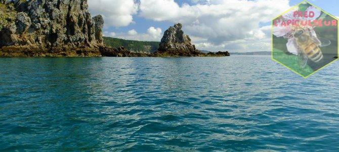 Vacances 2016: Camaret-Crozon (Bretagne-Finistère): 7ème partie, balade en mer depuis Morgat