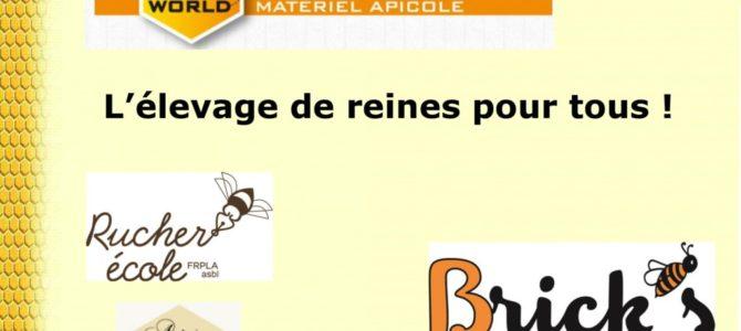 Conférence de Didier Brick: «L'élevage de reines pour tous»