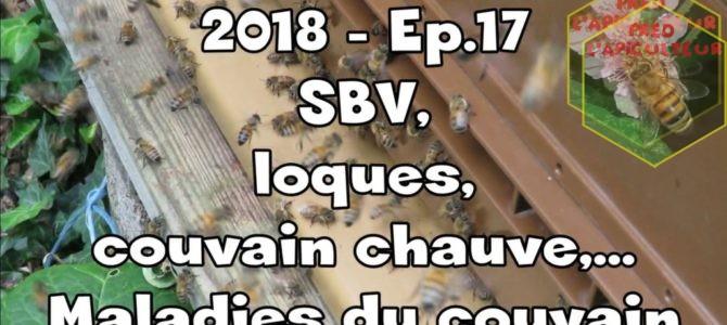 2018-Ep.17 – SBV, loques, couvain chauve,…Maladies du couvain