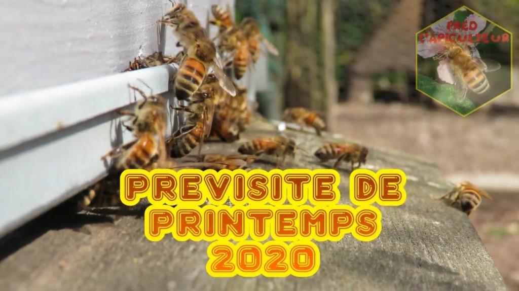Prévisite 2020